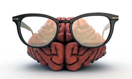Big brain with black glasses Royalty Free Stock Images