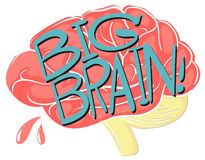 Big brain with text Royalty Free Stock Images