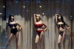 Big breast plastic female mannequins in underwear at night showcase. Women clothes fashion store mannequin wearing Stock Images