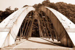 Big bridge on the land Royalty Free Stock Images