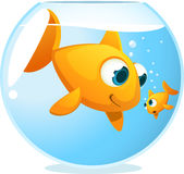 Big brother fish looking at small sibling. Inside transparent fish tank, Fishbowl  illustration Royalty Free Stock Image