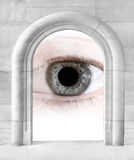 Big Brother is watching you. Stock Photo