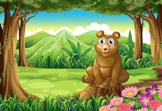 A big brown bear above the stump Stock Photo