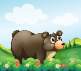 A big brown bear in the garden Stock Image
