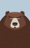 Big brown bear. Vector illustration Stock Photo