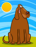 Big brown dog cartoon illustration Stock Images