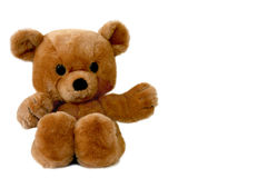 Big brown teddy bear. Isolated on white Stock Photography