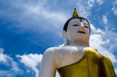 Big Buddha Bust Royalty Free Stock Images