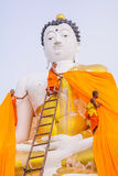 Big Buddha. Stock Images