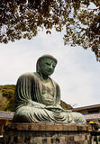 Big Buddha Daibutsu with blue sky Royalty Free Stock Image