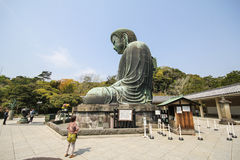 The big Buddha, Daibutsu, in Kamakura, Japan Royalty Free Stock Photography