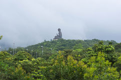 The big Buddha in a fog Royalty Free Stock Photos