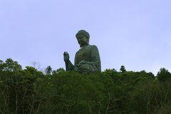 Big Buddha in the jungle Stock Photos