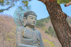 Big Buddha Monument of Sinheungsa Temple in Seoraksan National Park, Sokcho, South Korea Stock Image