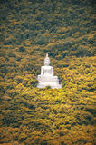Big Buddha on the mountain beside by forest Royalty Free Stock Photo