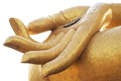 Big Buddha's Hand Stock Image