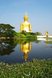 Big Buddha statue. At Wat Muang,Thailand stock photos