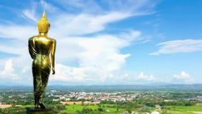Big buddha statue stock video