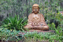 Big buddha statue and plant Stock Images