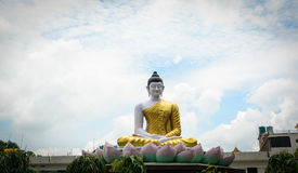 Big Buddha statue at the temple in Gaya, India.  Stock Images