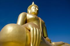 Big Buddha statue in the world Royalty Free Stock Image