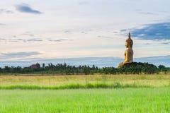 Big buddha in sunrise Stock Image
