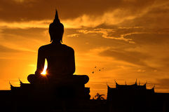 Big buddha in thailand. Sunset with the big buddha in Thailand Royalty Free Stock Photo