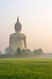 The Big Buddha at Wat Muang Temple with fog Stock Images