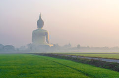 The Big Buddha at Wat Muang Temple with fog and grass Royalty Free Stock Photo