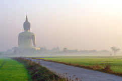 The Big Buddha at Wat Muang Temple with fog and tree, Angthong, Stock Photography