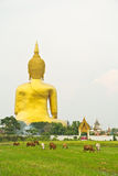 Big Buddha at Wat Mung, Thailand. Big Buddha at Wat Mung in Ang Thong province of Thailand Royalty Free Stock Photos