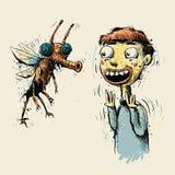 Big Bug Royalty Free Stock Image