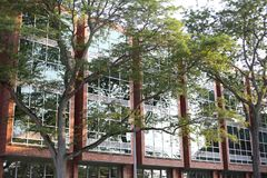 Big building behind trees royalty free stock photography