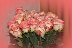 Big bunch pink roses Stock Photo