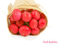 Big bunch of radish Royalty Free Stock Photography