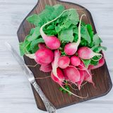 Bunch of radishes with leaves on a wooden table. Big bunch of red radishes with leaves for salad on a white old wooden table, top view Royalty Free Stock Photo