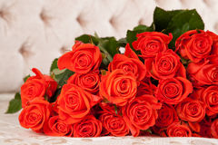 Big bunch of roses Royalty Free Stock Photos