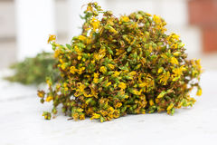 Big bunch  yellow flowers Hypericum on white background Stock Photography