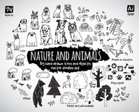 Big bundle animal and nature doodles icons objects. Stock Image