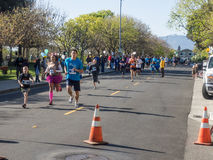 Big Bunny Fun Run. CUPERTINO, CA - APRIL 4: Annual Big Bunny Fun Run, an event that celebrates positive, healthy, and connected community on April 4, 2015 in Royalty Free Stock Photo