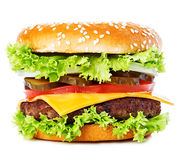 Big burger, hamburger, cheeseburger close-up isolated on a white background.  Royalty Free Stock Image