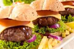 Big burgers Royalty Free Stock Photos