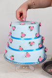 Big cake with roses royalty free stock image