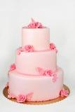 Big cake on white Stock Image