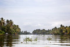 Big canal. Calm waters of a canal in Alappuzha Stock Photography