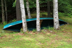 Big canoe tucked between birch trees Royalty Free Stock Photos