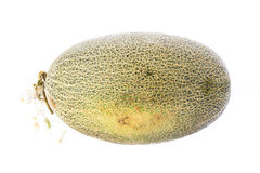 Big cantaloupe melon on white background. Stock Photos