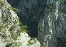 Big canyon in Crimea Stock Images