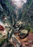 The big canyon of Crimea Stock Photo