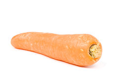 Big carrot. Isolated on a white background royalty free stock images